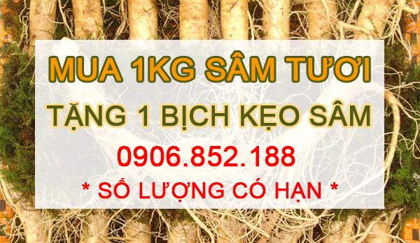 sam-tuoi-han-quoc