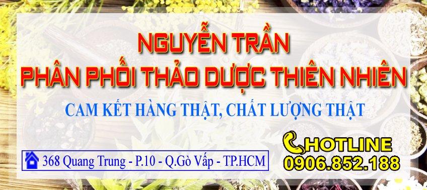 Nguyên Trần Coop bán cây an xoa uy tín