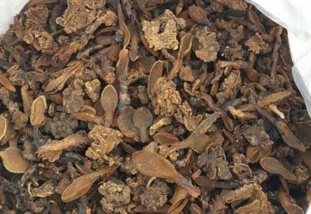 Cách làm nấm ngọc cẩu khô 1