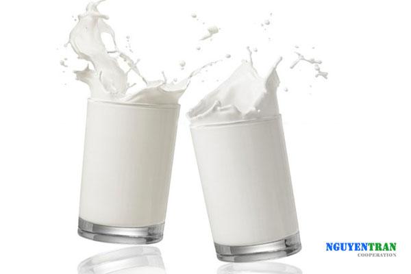 tránh đau dạ dày bằng sữa