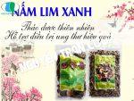Nấm Lim Xanh bán ở đâu là uy tín và chất lượng nhất?