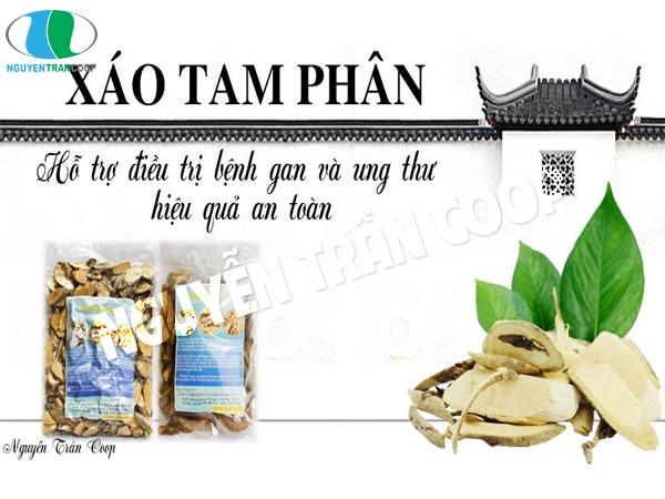 Xáo Tam Phân Nguyễn Trần