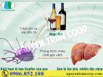 Vô vàn tác hại của rượu bia với gan ai cũng nên tránh